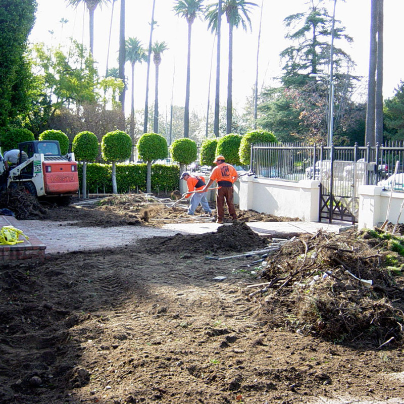 Canon-Drive-Beverly-Hills-California-Landscaping