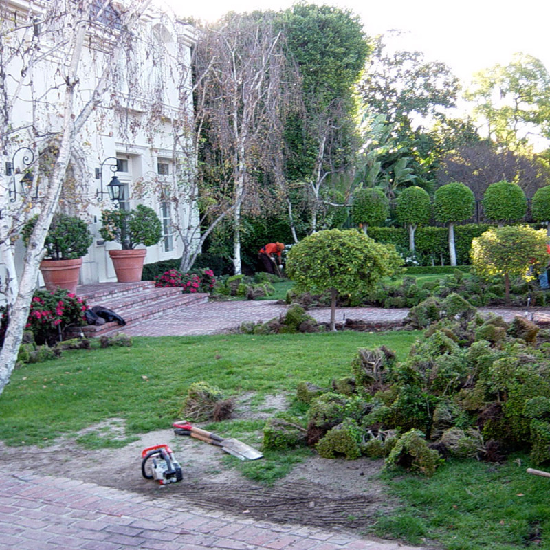 Canon-Drive-Beverly-Hills-Lawn-Care