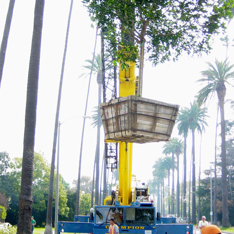 Canon-Drive-Crane-Landscaping