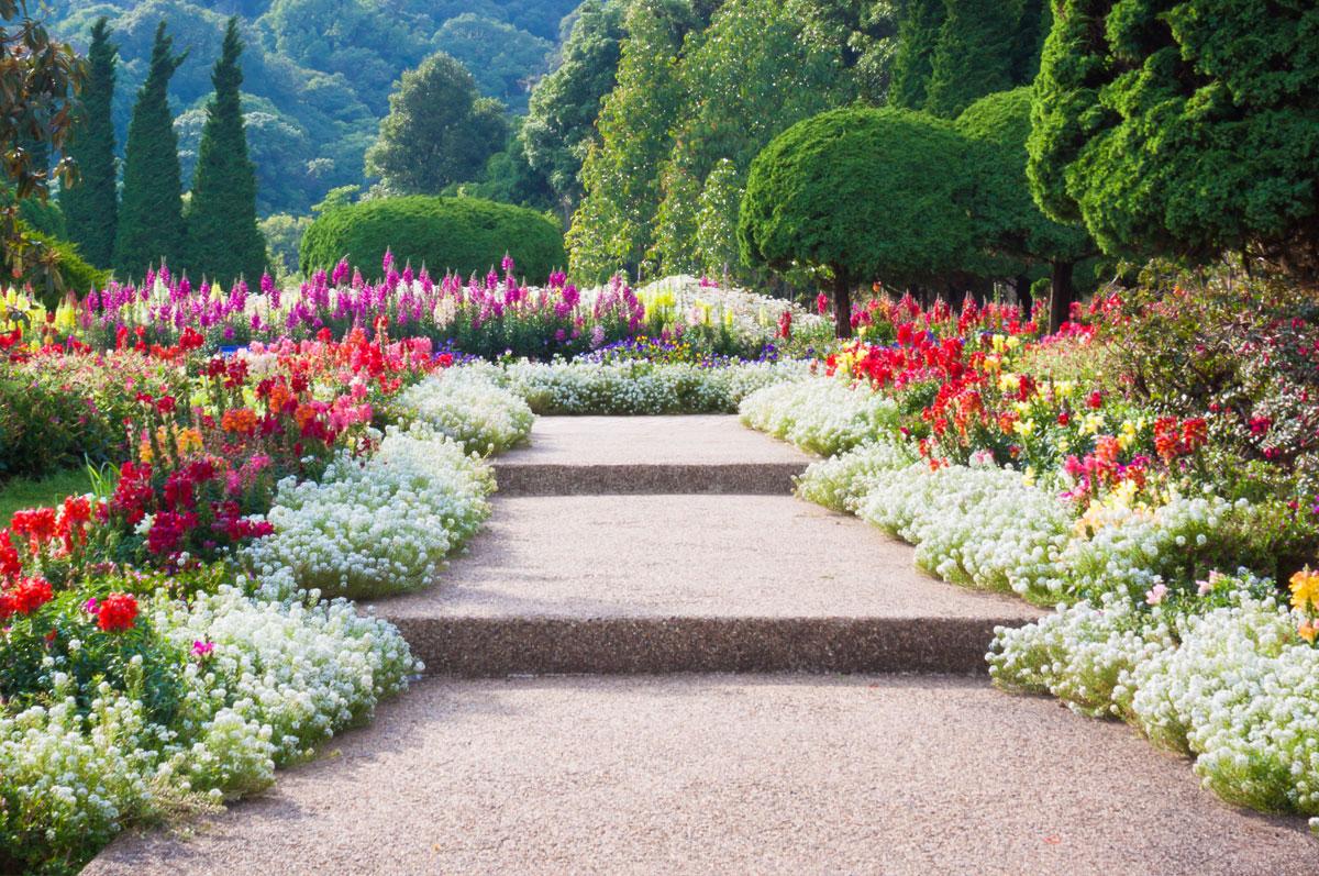 Seaonal_Garden_Design